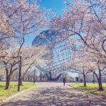 Spring at the Unisphere, Flushing Meadows Corona Park, New York City by @gigi_nyc