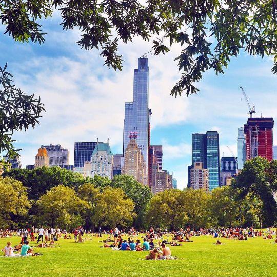 Sheep Meadow, Central Park by @gigi_nyc