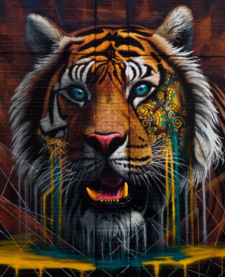 Tiger Mural at Mulberry St, Little Italy, NYC