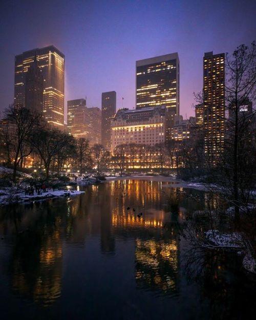 Central Park At Night 📷 Paul Seibert @pseibertphoto